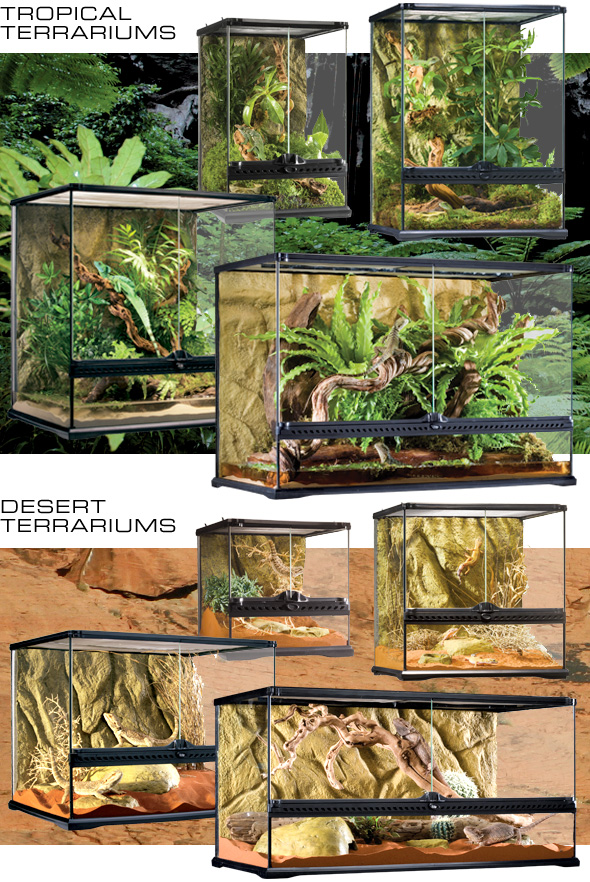 exo terra glass terrariums. Black Bedroom Furniture Sets. Home Design Ideas