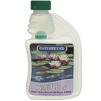 Interpet Anti Ulcer 250ml