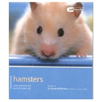 Pet Friendly Hamster