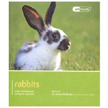 Pet Friendly Rabbits